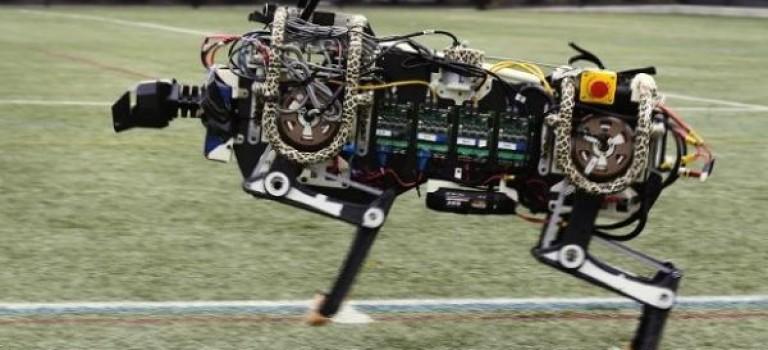 ربات چیتای MIT پرش از روی موانع را فرا گرفت