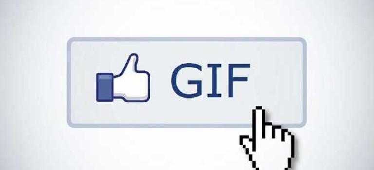 امکان افزودن فایل GIF به فیسبوک فراهم شد