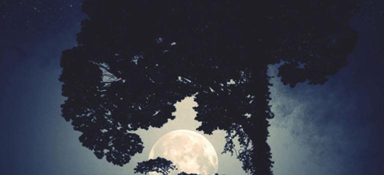 عکس های شبح مانند با آیفون
